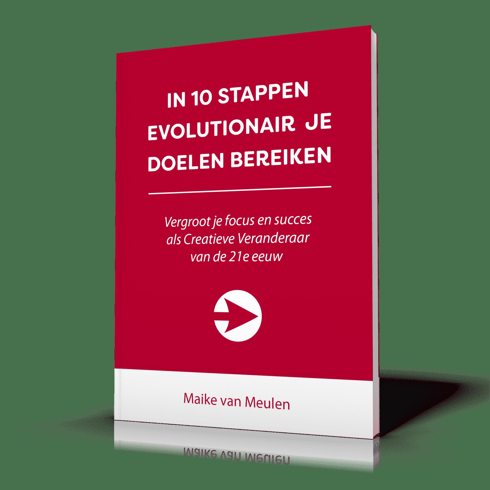 3D-Cover 10 stappen Maike van Meulen v1